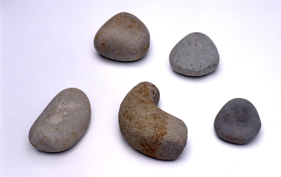二ツ石戎ノ前遺跡及び出土品/兵庫県立考古博物館提供
