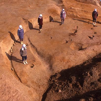 舟木遺跡・発掘中の様子